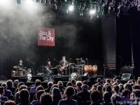 Robert-Lettner-Musikpics-Live-Music-Photography-Jarmo-Saari-Republic-DSC01217