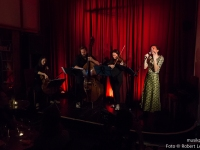 Robert-Lettner-Musikpics-Live-Music-Photography-Phoebe-Violet-DSC02003